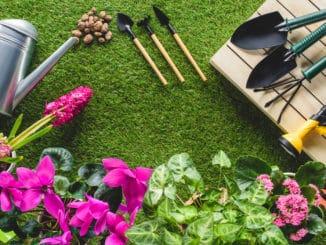 Die 10 wichtigsten Gartengeräte